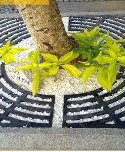 Ghi bảo vệ gốc cây